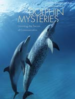 Dolphin Mysteries Unlocking the Secrets of Communication