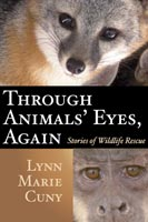Through Animals' Eyes, Again Stories of Wildlife Rescue